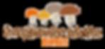 Champignonnière de la frise | Eybens