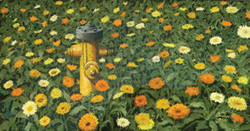 Daisies with Water Hydrant