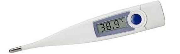 Fieberthermometer.jpg