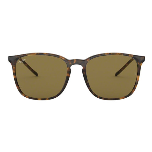 Ray-Ban RB 4387 710/73 Size:56