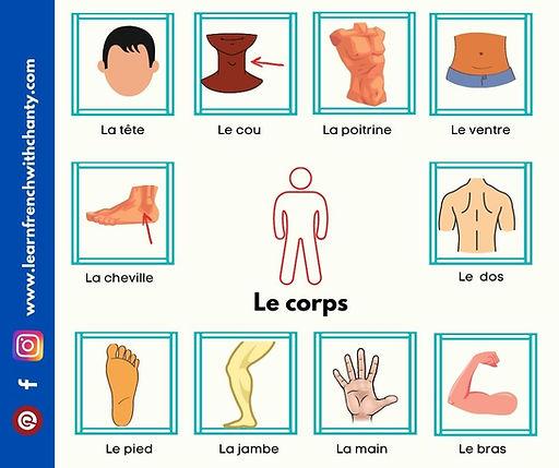 Le corps humain.jpg