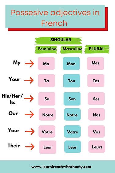 French possessive adjectives.jpg