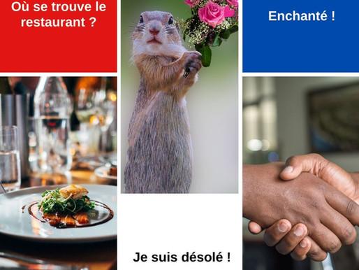 Basic French sentences for beginners to memorize