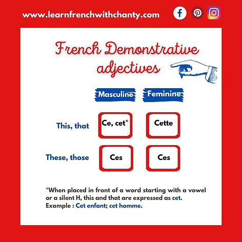 French demonstrative adjectives.jpg
