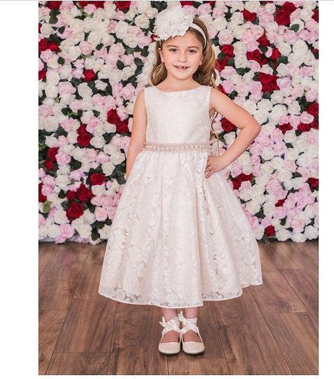 Lace V Back Bow Dress
