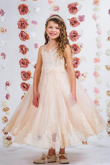 Lace Illusion Bateau Dress-More Colors Available