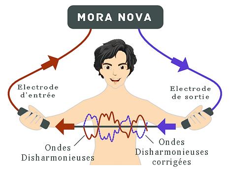 Principe de la bioresonance avec le Mora-Nova