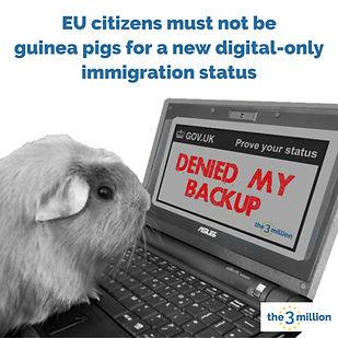 GuineaPig-deniedmybackup.jpeg