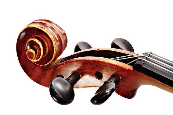 Violin%20Pegs_edited.jpg