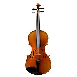 Violin100_1800x1800.webp