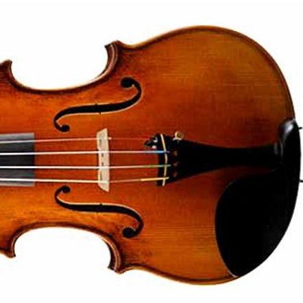 Violin4100AT_edited.jpg