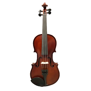 viola 60.png