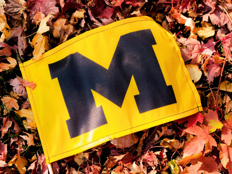 Help celebrate this fall with a band flag!