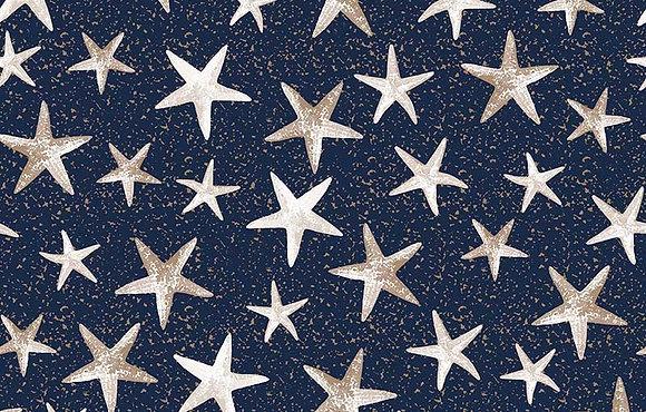 Nautical Navy Blue with stars 6079-05 kennard and kennard