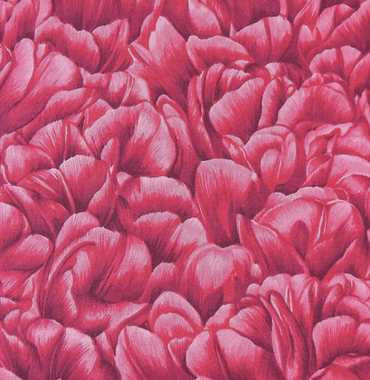 Truly Tulips 0002