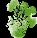 Akvarell löv
