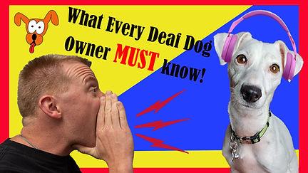 Deaf Dogs2.jpg