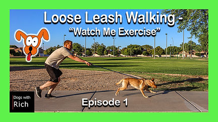 Loose Leash Walking-Watch Me-Ep.1.jpg