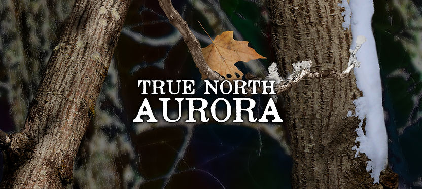 True North Aurora b.jpg