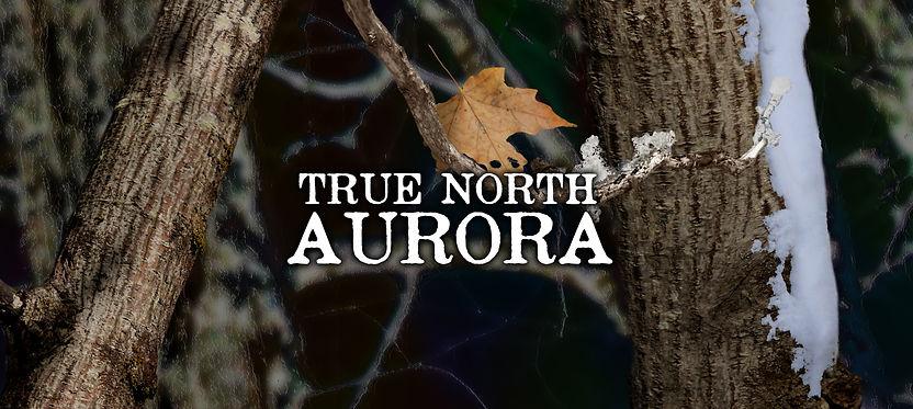 True North Aurora b.jpg