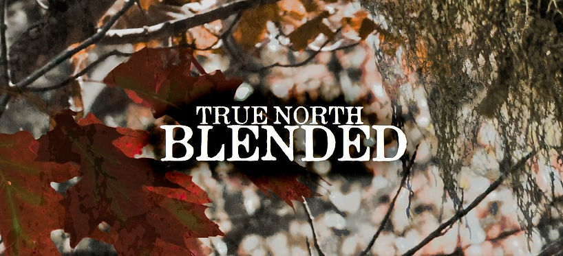 true-north-blended_1.jpg