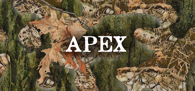 apex1b_2.png