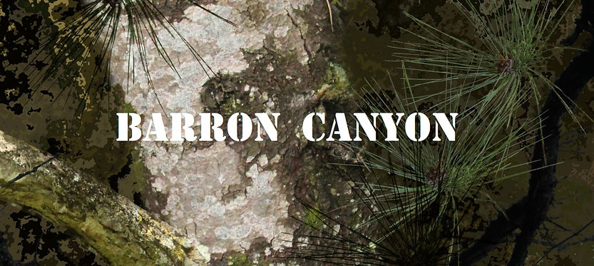 Camo Barron Canyon.jpg