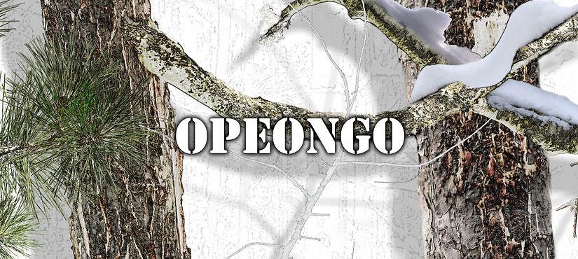 Opeongo t.jpg