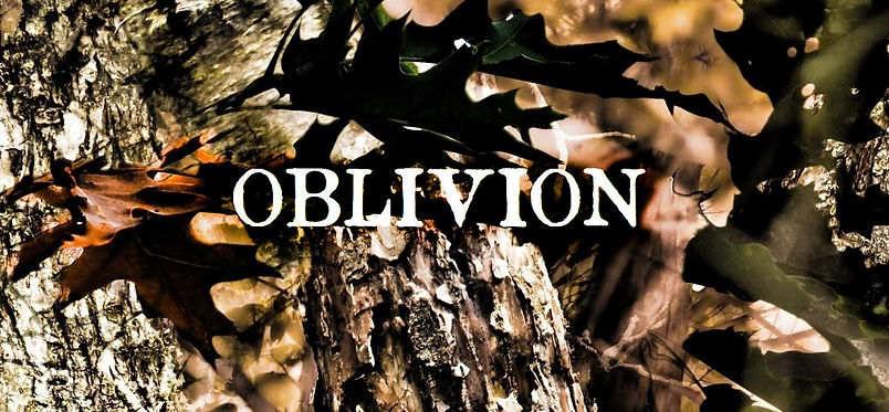 oblivion_5.jpg