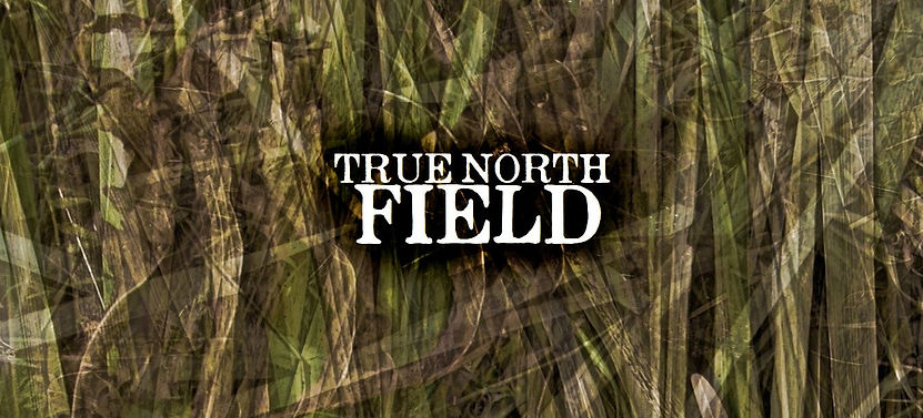 true-north-fieldz_1.jpg