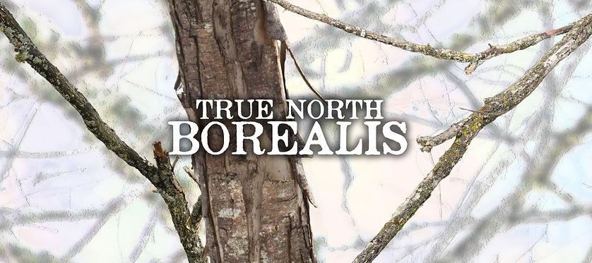 True North Borealis.jpg