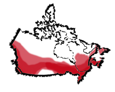 Canada Map Web RB.png