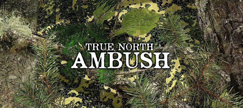 True North Ambush.jpg