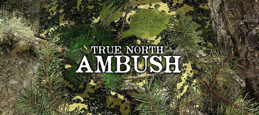 True North Ambush.jpg