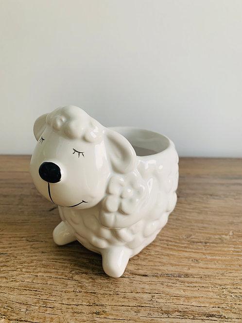 Lamb Pot