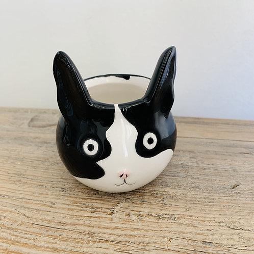 Molly Pot