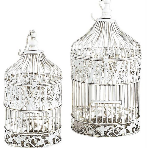White Washed Bird Cage