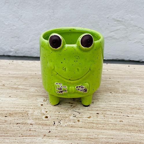 Froggy Planter