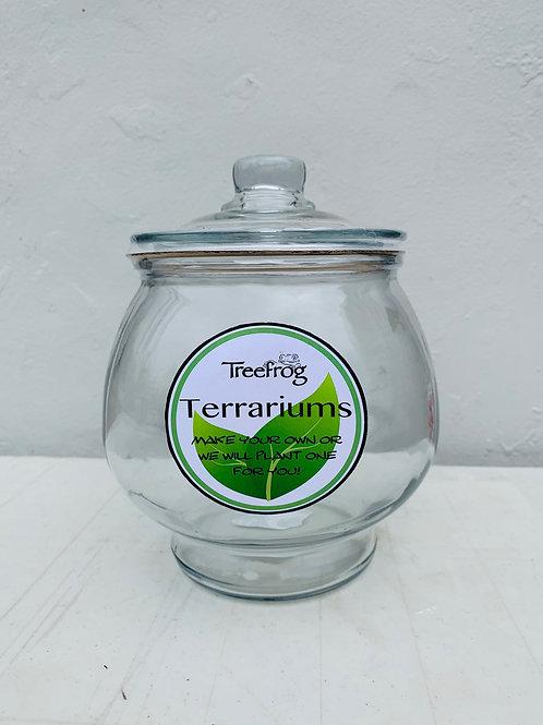 Glass Terrarium (w/lid)