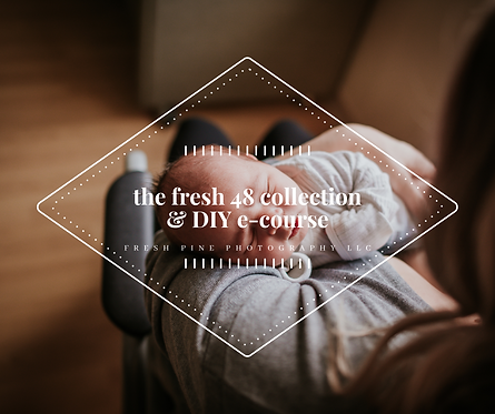 The Fresh 48 Collection PRESET PACK + DIY Fresh 48 E-Course