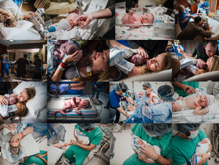 Fresh Pine Photography - A Year In Review (Births)