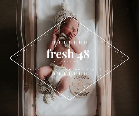The Fresh 48 Collection PRESET PACK