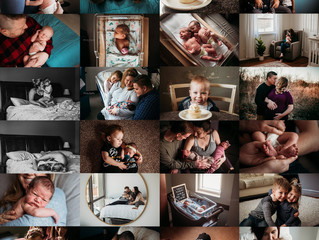 Fresh Pine Photography |  2019 - A Year In Review (families + babies)