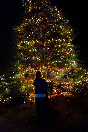 Presented By - Holiday Festival Of Lights Charleston South Carolina
