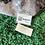 Thumbnail: Louis Vuitton Galaxy Bumbag