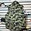 Thumbnail: Bape Puffer Vest Sz XL