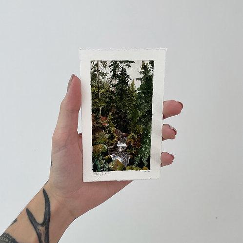 Floresta negra 2   impressão fine art