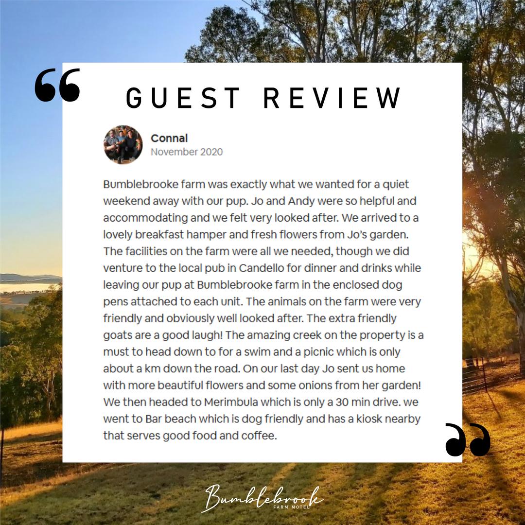 Bumblebrook Review 3.png