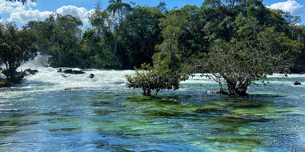 Chapadas do Mato grosso + Pantanal + Nobres