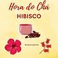 hibisssco.png